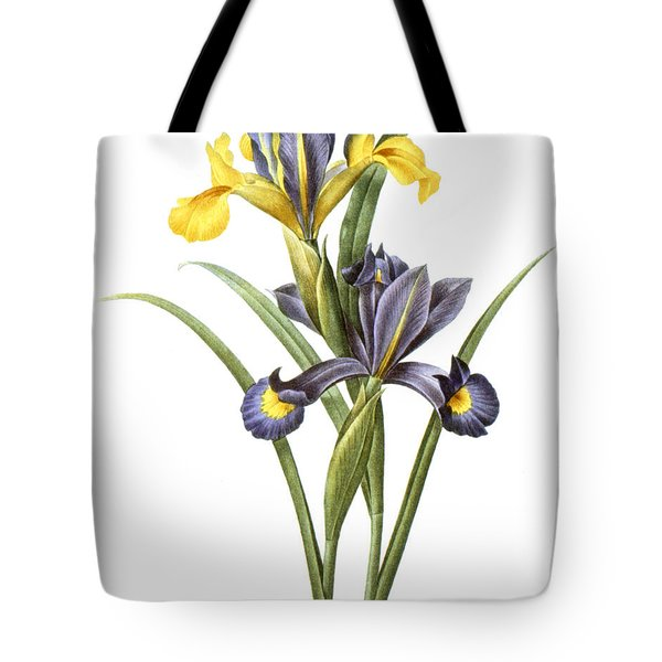 Spanish Iris Tote Bag by Granger