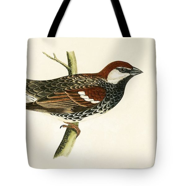 Spanish Sparrow Tote Bag by English School