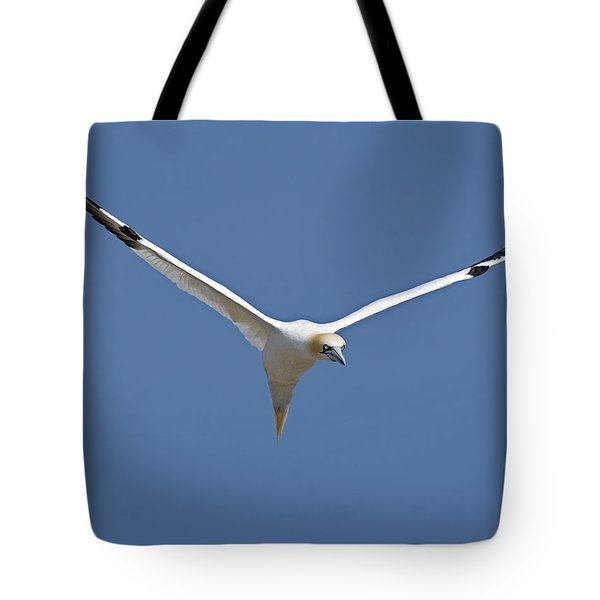 Speed Adjustment Tote Bag by Tony Beck