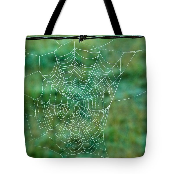 Spider Web in the Springtime Tote Bag by Douglas Barnett