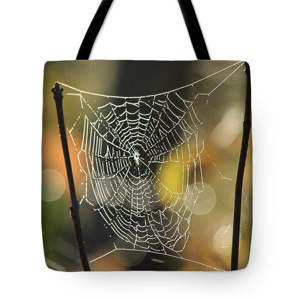 Spider's Creation Tote Bag by Karol Livote