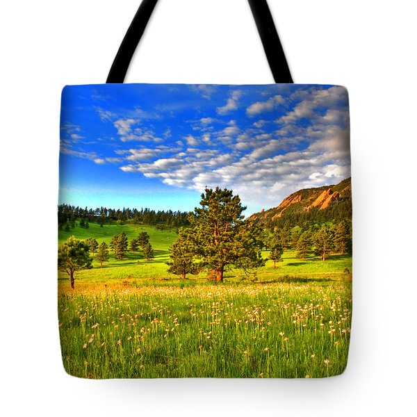 Spiritual Sky Tote Bag by Scott Mahon