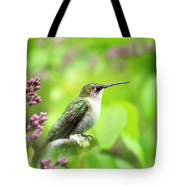Spring Beauty Ruby Throat Hummingbird Tote Bag by Christina Rollo