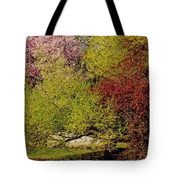Spring Colors Tote Bag by Juergen Roth