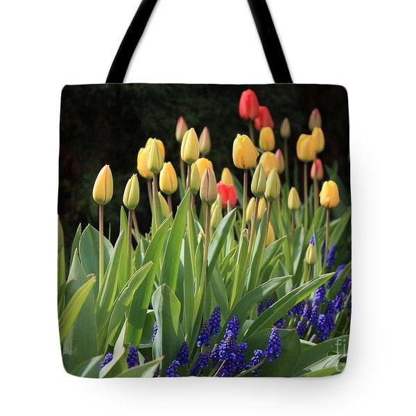 Spring Garden Tote Bag by Carol Groenen
