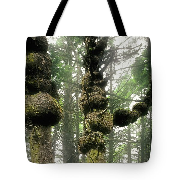 Spruce Burl Olympic National Park Beach 1 Wa Tote Bag by Christine Till