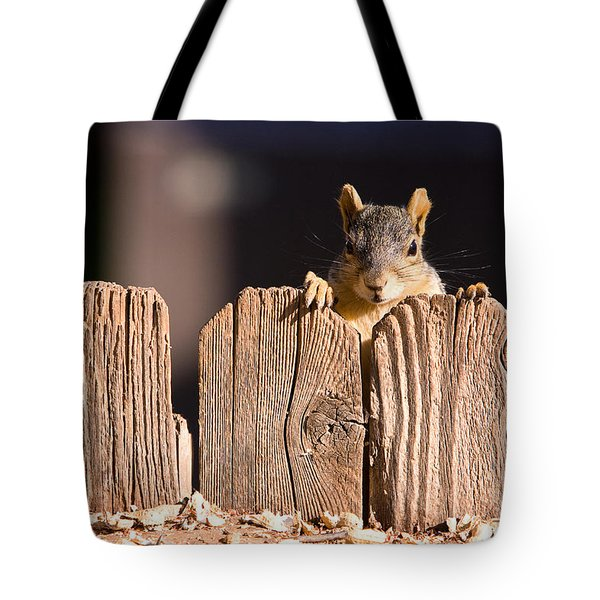Squirrel On The Fence Tote Bag by James BO  Insogna