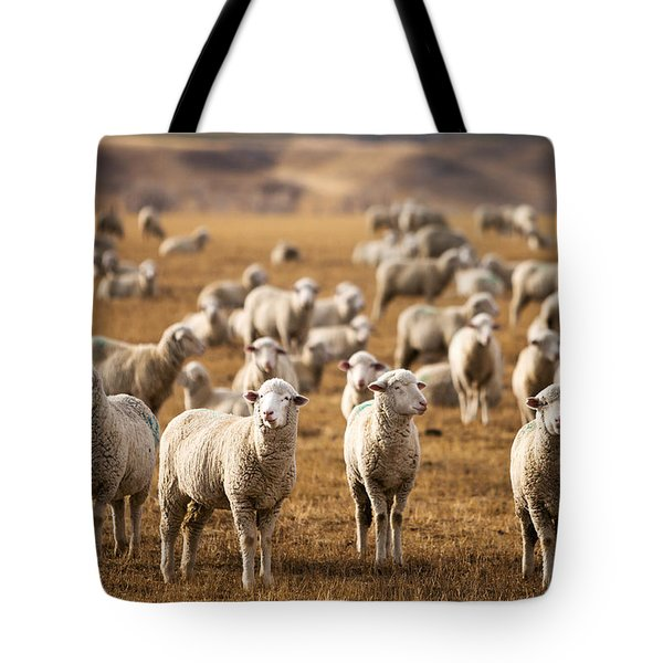 Standing Out In The Herd Tote Bag by Todd Klassy