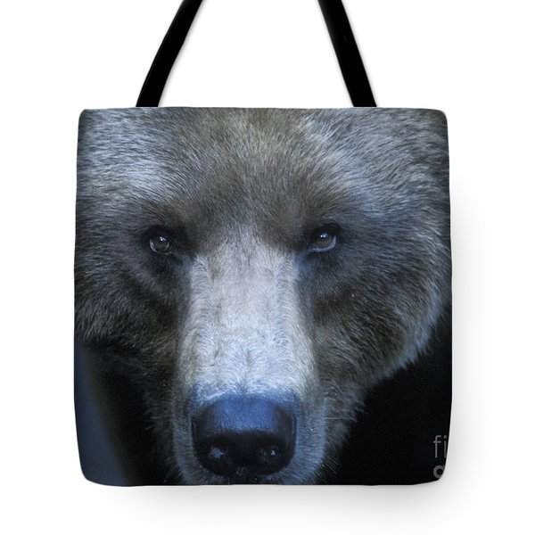 Stare Down Tote Bag by Sandra Bronstein