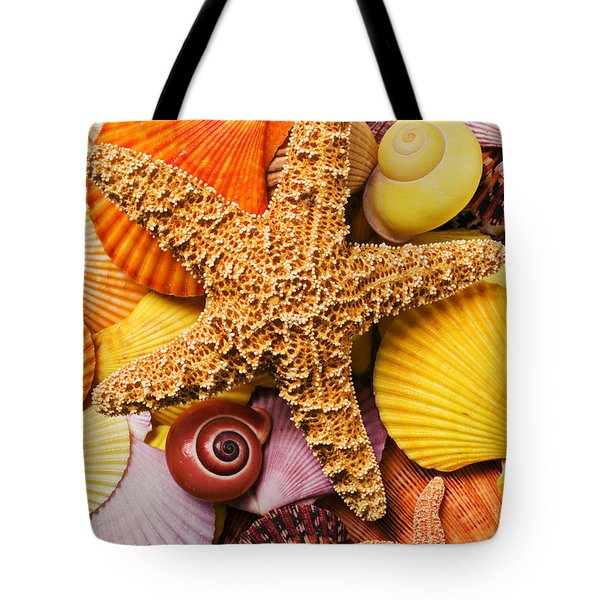 Starfish and seashells  Tote Bag by Garry Gay