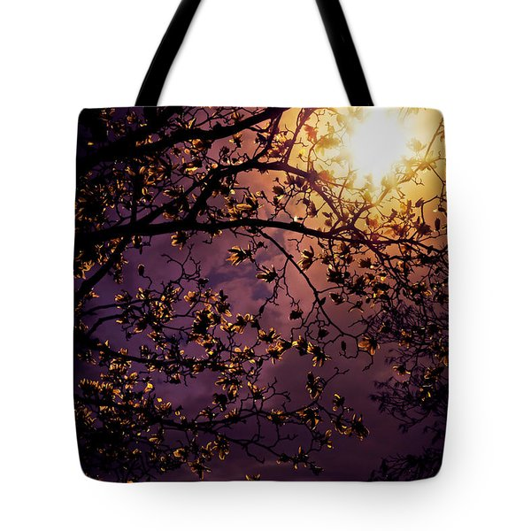 Stars In An Earthly Sky Tote Bag by Vivienne Gucwa