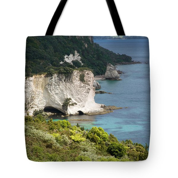 Stingray Cove Tote Bag by Himani - Printscapes