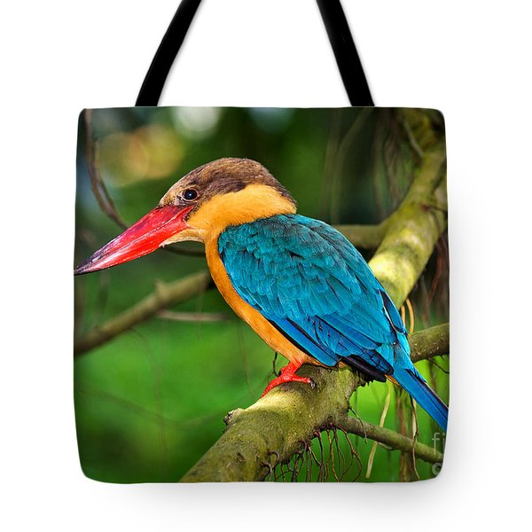 Stork-billed Kingfisher Tote Bag by Louise Heusinkveld