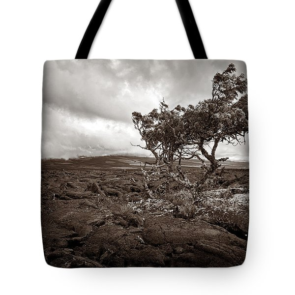 Storm Moving In - Sepia Tote Bag by Christopher Holmes