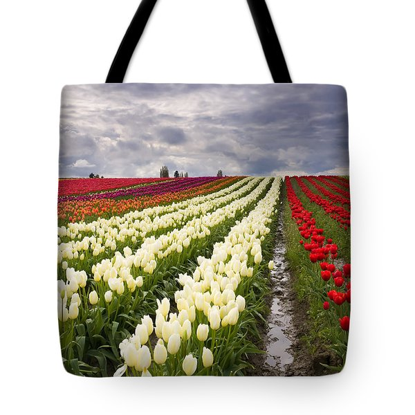 Storm over Tulips Tote Bag by Mike  Dawson