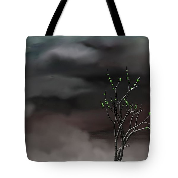 Stormy Weather Tote Bag by David Lane