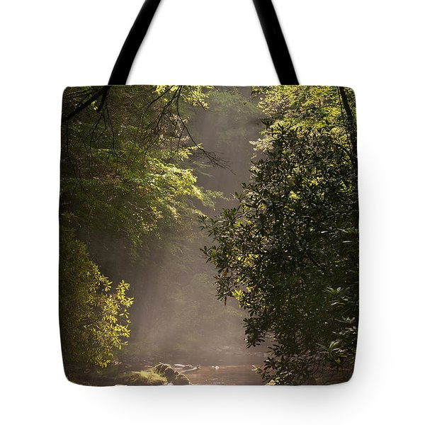 Stream Light Tote Bag by Steve Gadomski