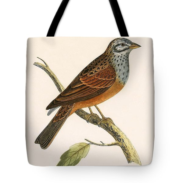 Striolated Bunting Tote Bag by English School