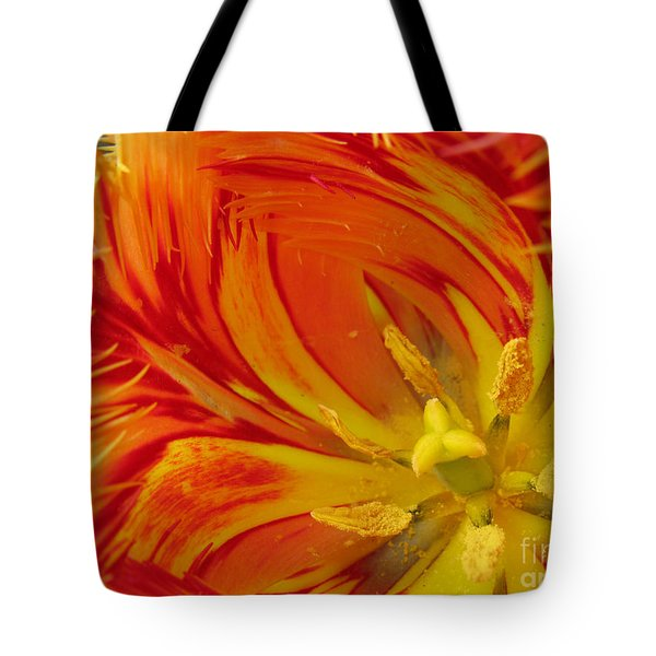Striped Parrot Tulips. Olympic Flame Tote Bag by Ausra Paulauskaite