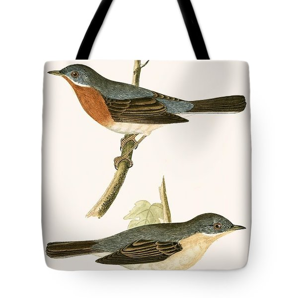Sub Alpine Warbler Tote Bag by English School
