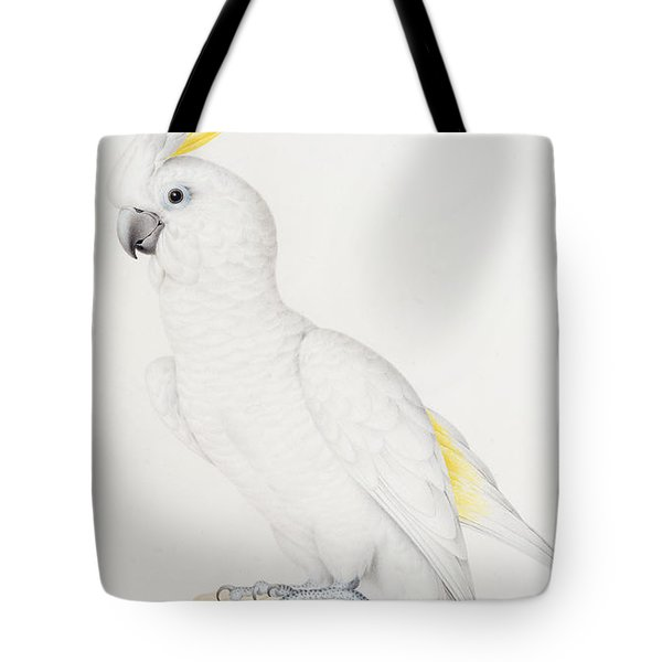 Sulphur Crested Cockatoo Tote Bag by Nicolas Robert