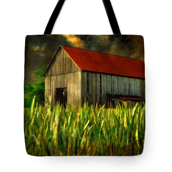 Summer Storm Tote Bag by Lois Bryan