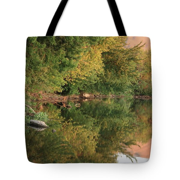 Summer Trees Sunset Tote Bag by Carol Groenen