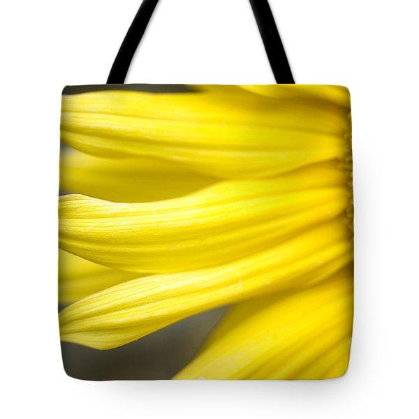 Sunflower Tote Bag by Mary Van de Ven - Printscapes