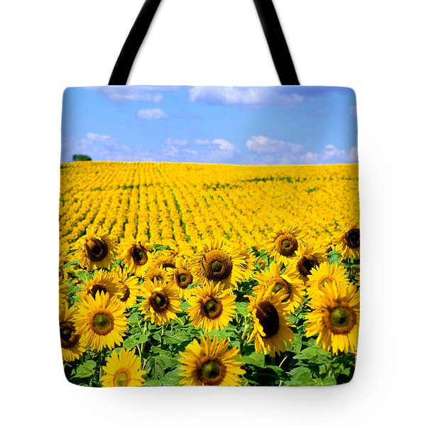 Sunflowers Tote Bag by Bill Bachmann and Photo Researchers