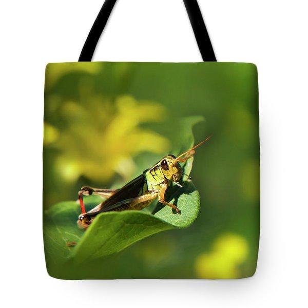 Green Grasshopper Tote Bag by Christina Rollo