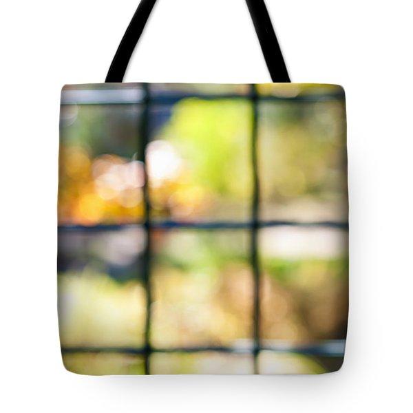 Sunny outside Tote Bag by Elena Elisseeva