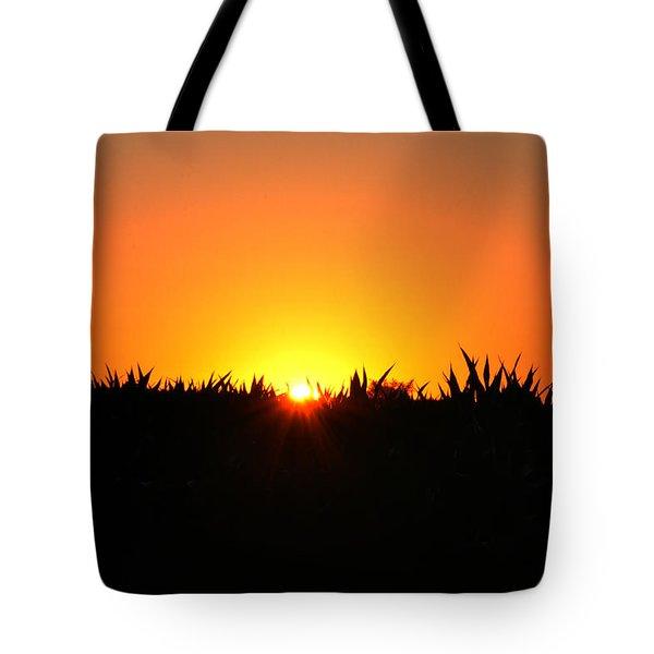 Sunrise Over Corn Field Tote Bag by Bill Cannon