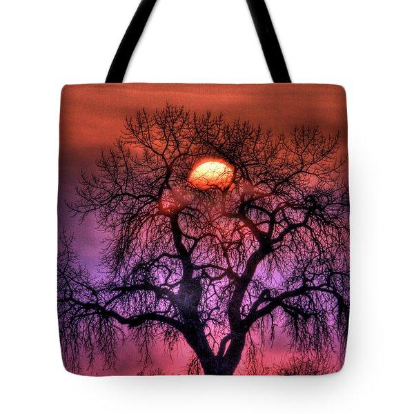 Sunrise Through The Foggy Tree Tote Bag by Scott Mahon