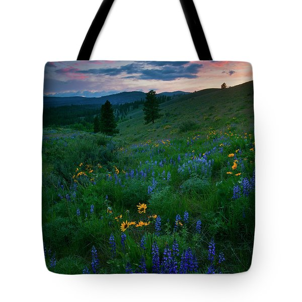 Sunset Meadow Trail Tote Bag by Mike  Dawson