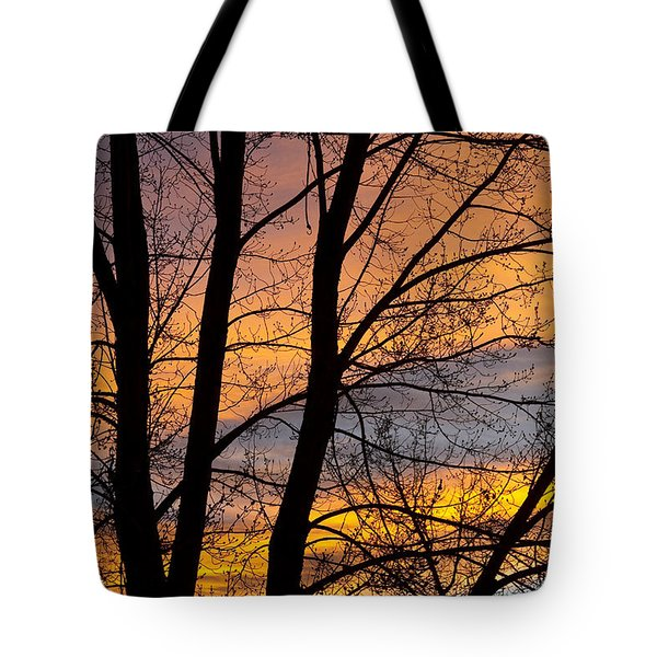 Sunset Through The Tree Silhouette Tote Bag by James BO  Insogna
