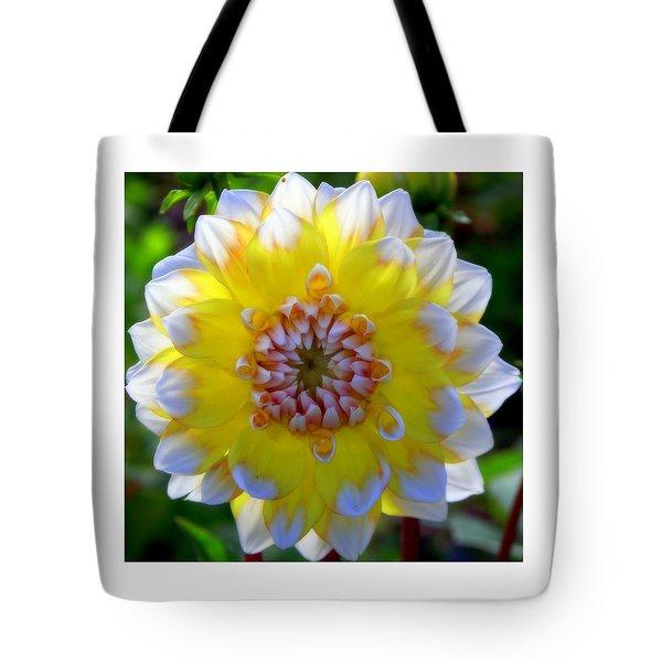 Sunshine Dahlia Tote Bag by KAREN WILES