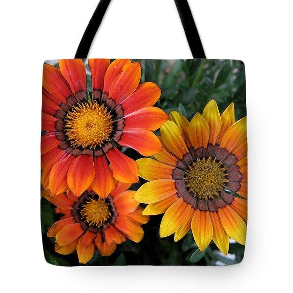 Surprise Tote Bag by Carol Sweetwood