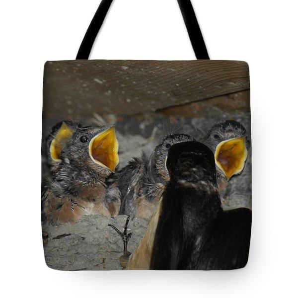 Swallows Opera  Tote Bag by Ernie Echols