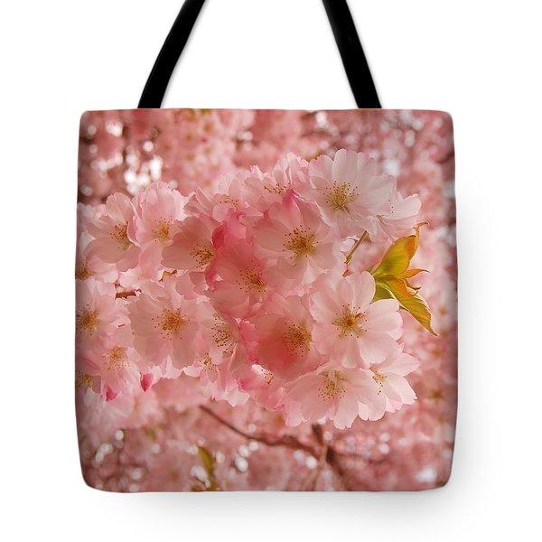 Sweet Pink- Holmdel Park Tote Bag by Angie Tirado