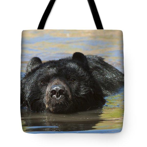 Taking A Dip Tote Bag by Sandra Bronstein