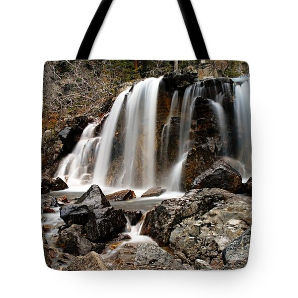 Tangle Falls Closeup 5 Tote Bag by Larry Ricker
