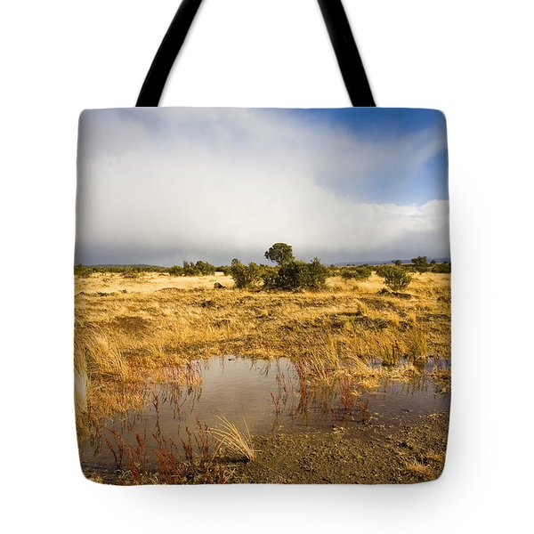 Tasmanian Storm  Tote Bag by Mike  Dawson