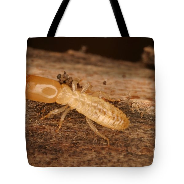 Termite Tote Bag by Ted Kinsman