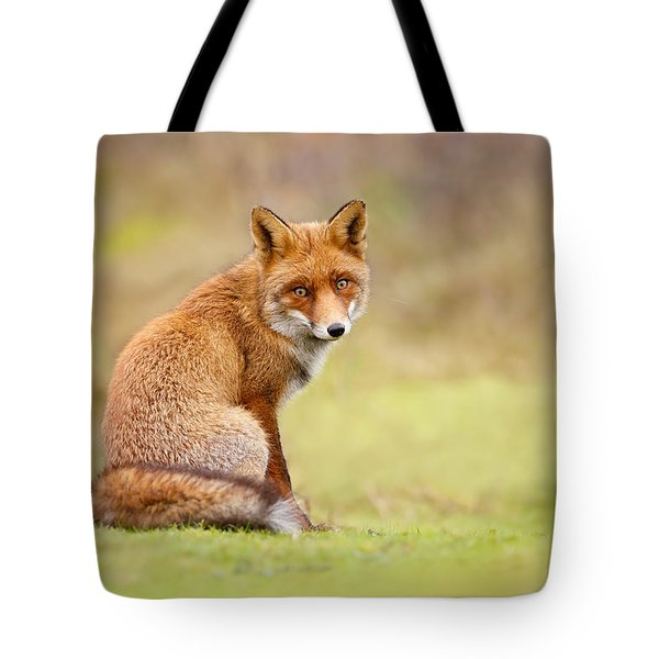 That Look - Red Fox Male Tote Bag by Roeselien Raimond