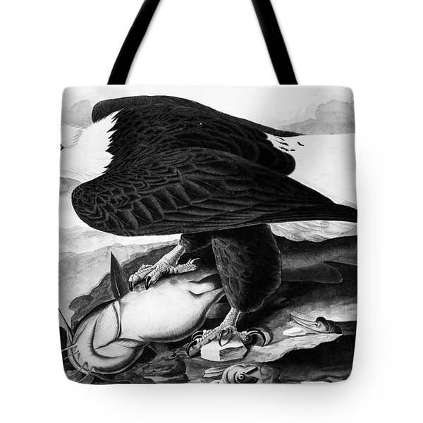 The Bald Eagle Tote Bag by Granger