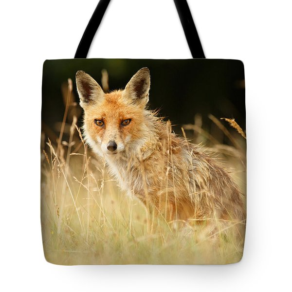 The Catcher In The Grass - Wild Red Fox Tote Bag by Roeselien Raimond
