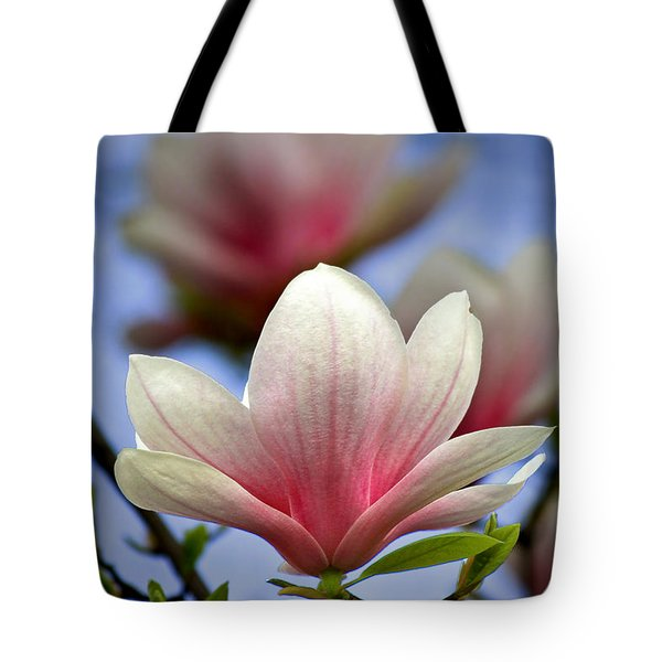 The Color Of Spring Tote Bag by Evelina Kremsdorf