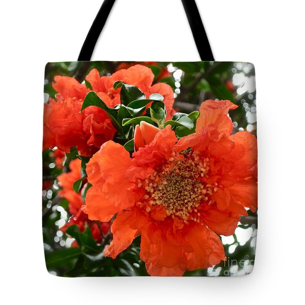 The Colour Orange Tote Bag by Gwyn Newcombe