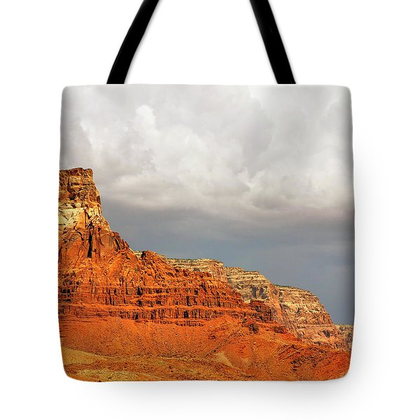 The Condor's Land Tote Bag by Christine Till