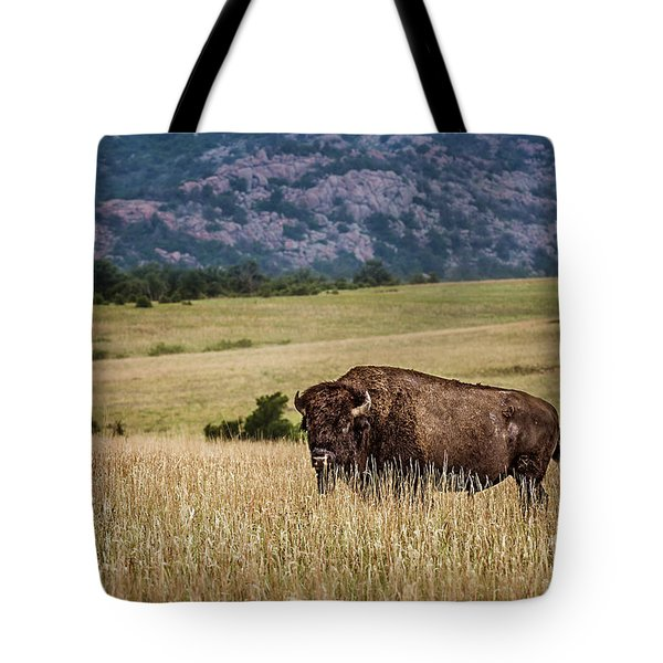 The Days End Tote Bag by Tamyra Ayles